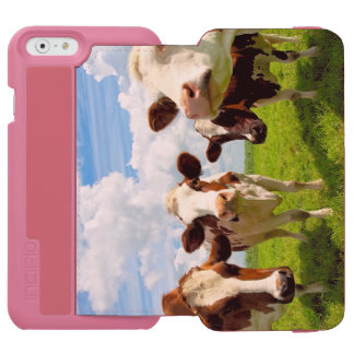 Four chatting cows interrupted in their daily chit iPhone 6/6s wallet case