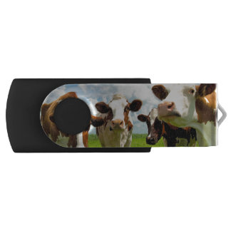 Four chatting cows interrupted in their daily chit USB flash drive