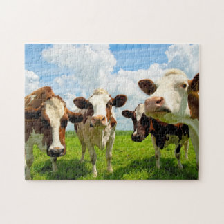 Four chatting cows jigsaw puzzle