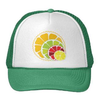 Four citrus fruits hat