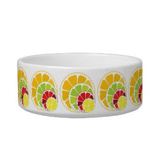 Four citrus fruits cat water bowls