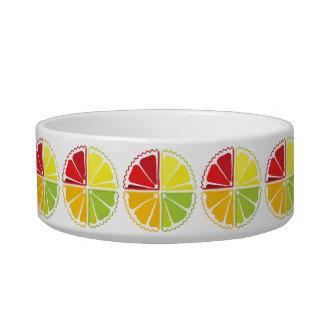 Four citrus fruits cat bowl