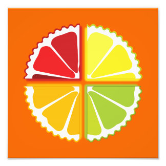 Four citrus fruits photographic print