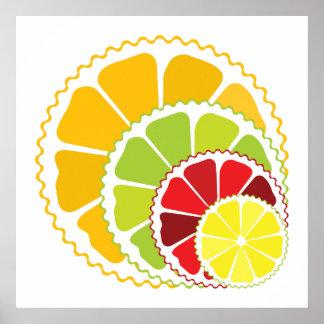 Four citrus fruits posters
