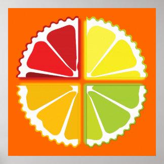 Four citrus fruits print