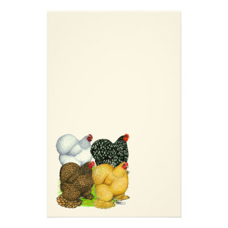 Four Cochin Hens Stationery