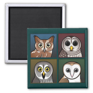 Four Color Owls (dark) 2 Inch Square Magnet
