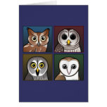 Four Color Owls (dark) Greeting Cards