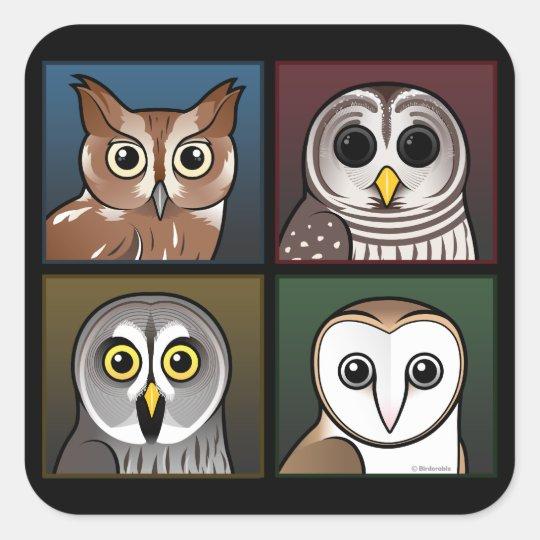 Four Color Owls (dark) Square Sticker