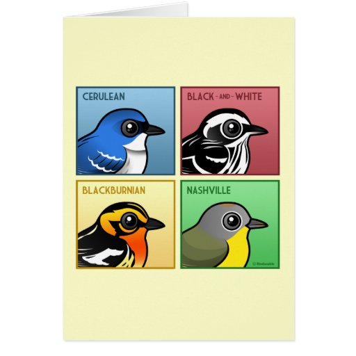 Four Color Warblers Stationery Note Card