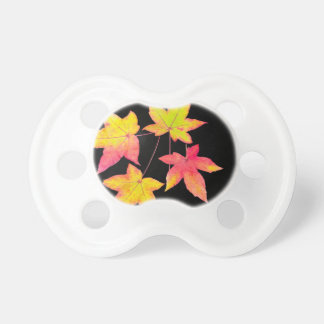 Four colored autumn leaves on black background pacifier