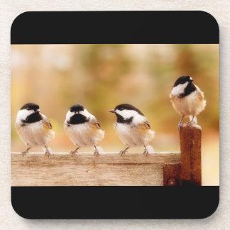 Four Cute Chickadees Drink Coaster