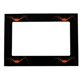 Four Cute Halloween Spiders Photo Frame Magnets