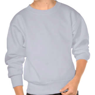 Four dragons pull over sweatshirt