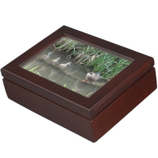 Four Ducks On A Log Memory Boxes