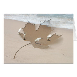Four Egrets; Customizable Card