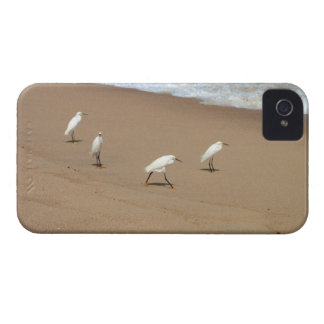 Four Egrets iPhone 4 Case
