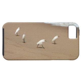 Four Egrets iPhone SE/5/5s Case