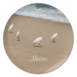 Four Egrets; Mexico Souvenir Dinner Plate