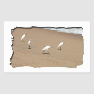 Four Egrets Rectangular Sticker
