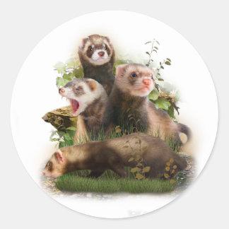 Four Ferrets in Their Wild Habitat Classic Round Sticker