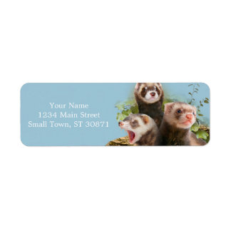 Four Ferrets in Their Wild Habitat Label