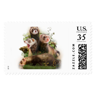 Four Ferrets in Their Wild Habitat Stamp