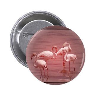 Four Flocking Flamingos 2 Inch Round Button