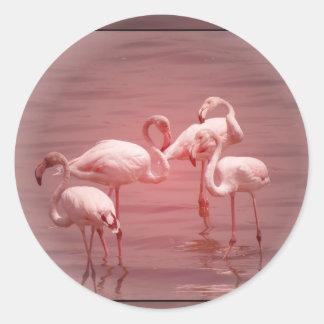 Four Flocking Flamingos Classic Round Sticker