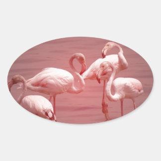 Four Flocking Flamingos Oval Sticker