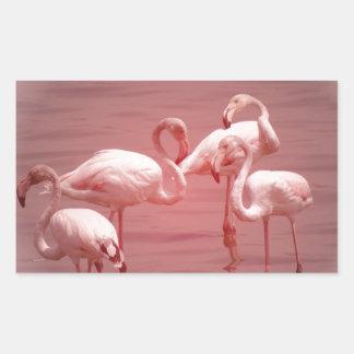 Four Flocking Flamingos Rectangular Sticker