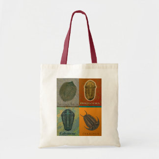 Four Fossil Trilobites Dark Bag