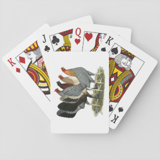 Four Gamefowl Hens Playing Cards