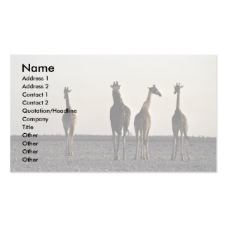 Four giraffes walking through the desert Double-Sided standard business cards (Pack of 100)