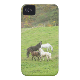 Four Happy Horses in Vermont iphone case iPhone 4 Cases