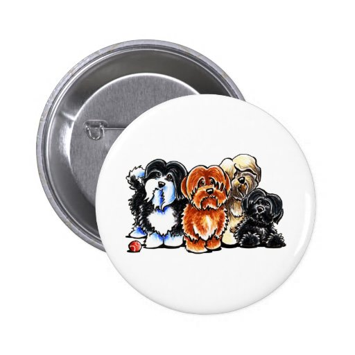 Four Havanese Buttons