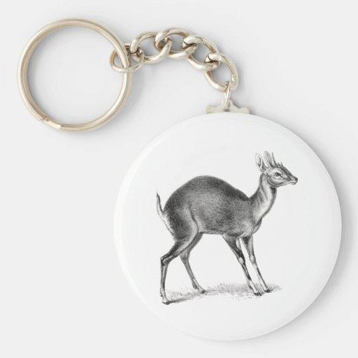 Four-Horned Antelope Key Chain