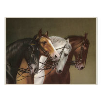 FOUR HORSES Fine Art Poster