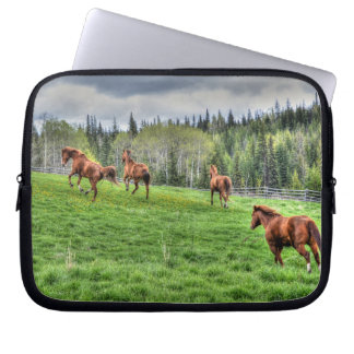 Four Horses Running on Fresh Grass in a Paddock Computer Sleeve