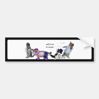Four Kittens At Play Bumper Sticker
