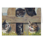 """""""Four Kittens Playing"""" Vintage Card"""