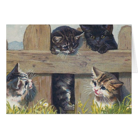 Four Kittens Playing Vintage Illustration Card