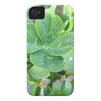 FOUR LEAF CLOVER iPhone 4 COVER