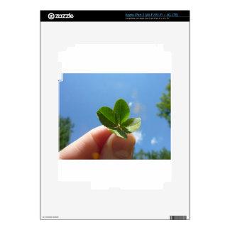 Four Leaf Clover Decal For iPad 3
