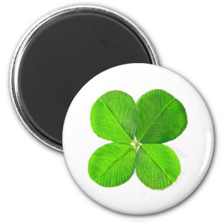 Four Leaf Clover The MUSEUM Zazzle Gifts Fridge Magnet