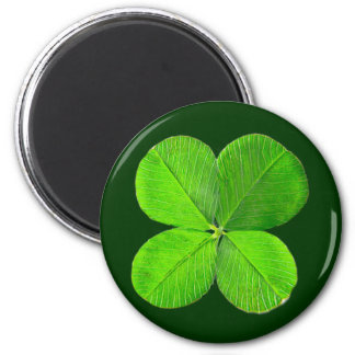 Four Leaf Clover The MUSEUM Zazzle Gifts Refrigerator Magnet