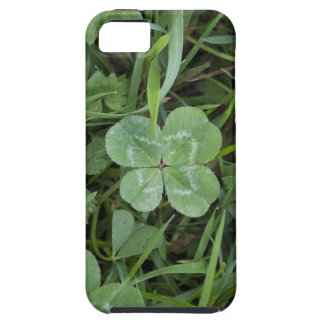 four leaf clover vibe iphone 5 case