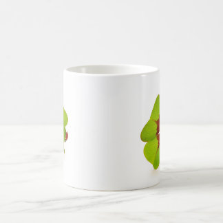 Four leaf more clover and lady nose coffee mug