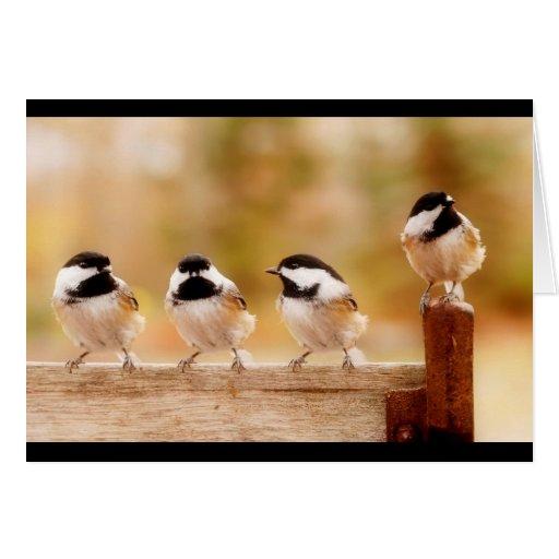 Four little chickadees card