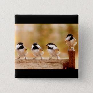 Four little chickadees pinback button